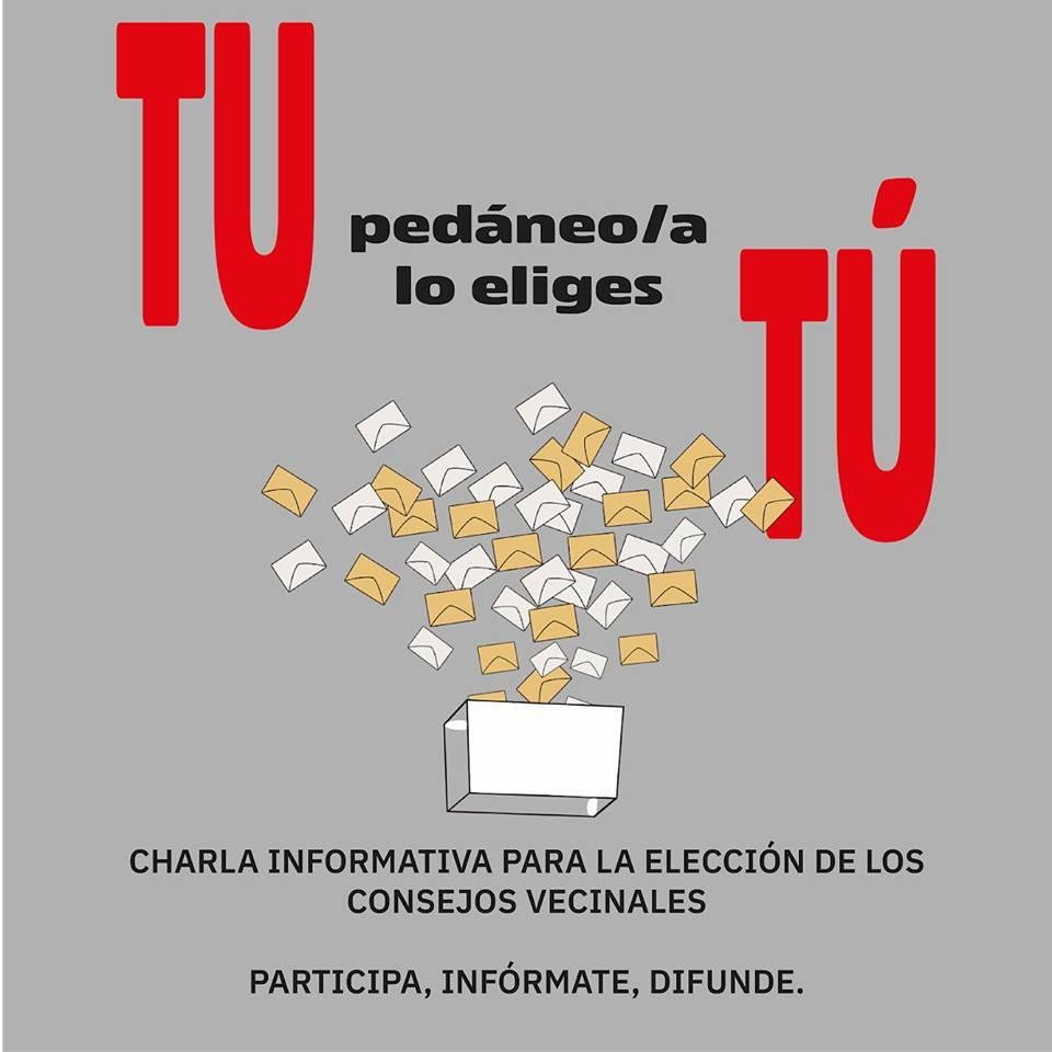 ELECCIÓN CONSEJOS VECINALES EN PEDANÍAS